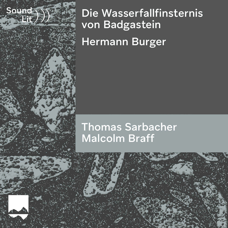 Die Wasserfallfinsternis von Badgastein - ein Hydrotestament in fünf Sätzen - Sound)))Lit