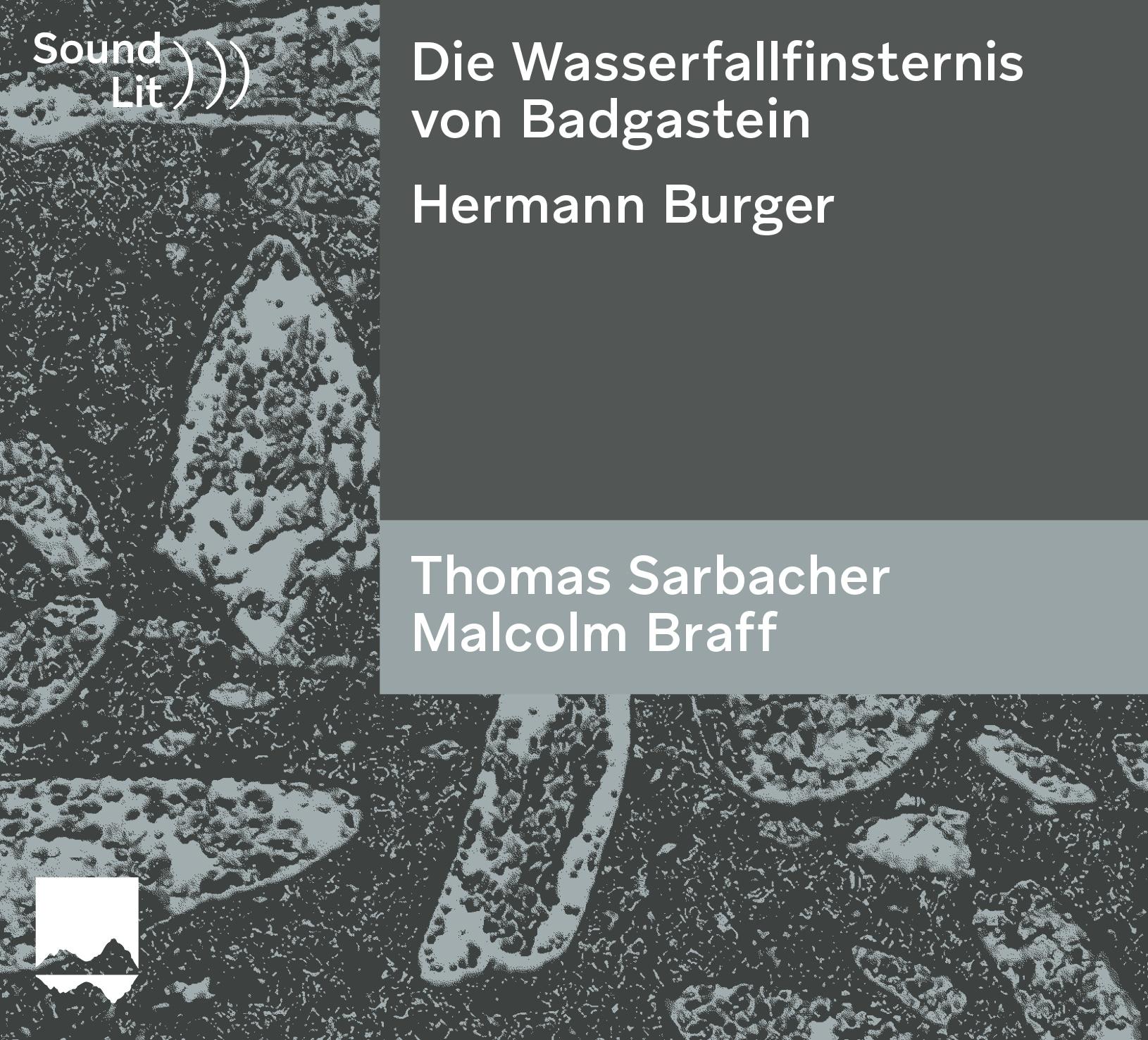 Die Wasserfallfinsternis von Badgastein – ein Hydrotestament in fünf Sätzen – Sound)))Lit