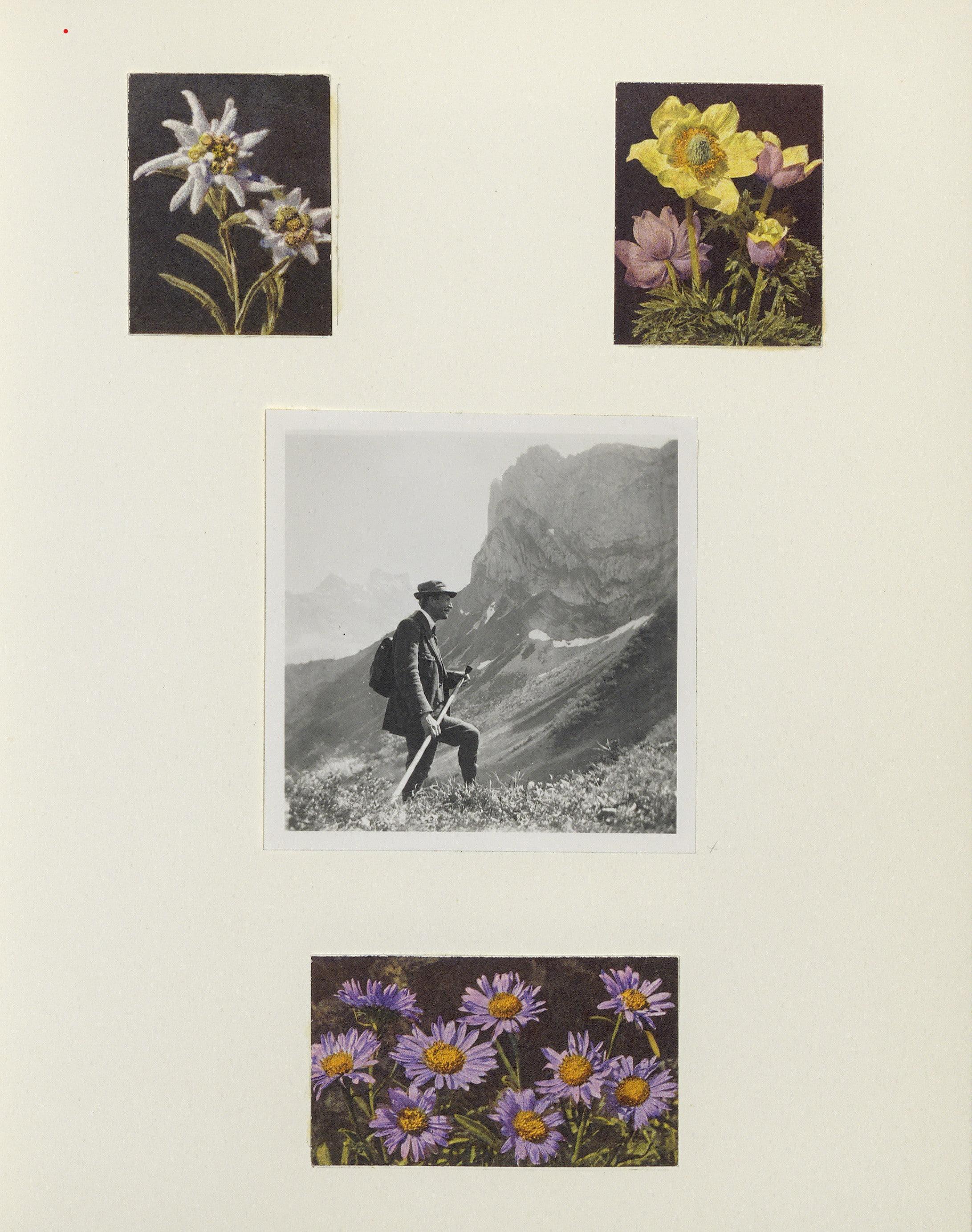 Album de photos privé de J. Lauber